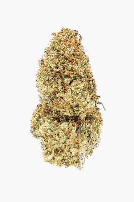 Weed Hub Premium Violator Kush