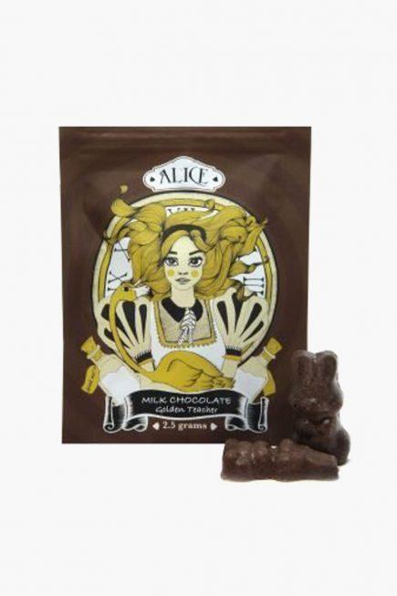 Alica Milk Chocolate Mushrooms 2.5g